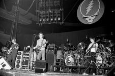 Grateful Dead - Jul 2, 1981 at The Summit