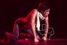 Iggy Pop - Oct 30, 1977 at Cullen Auditorium